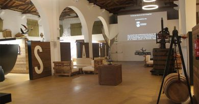 Museo del Vino y la Sal