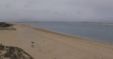 Webcam Playa de Sancti Petri